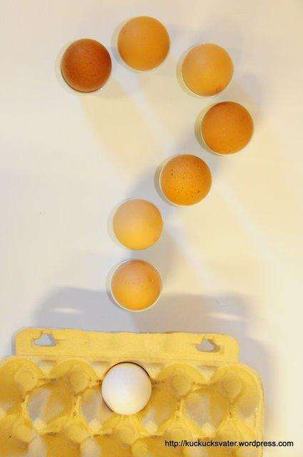 Kuckuckskind Fragezeichen aus Eier